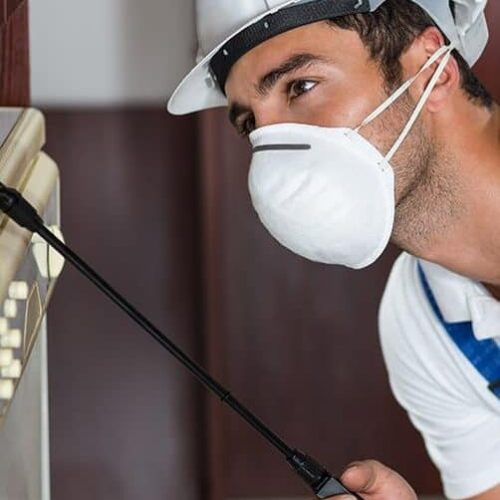Quality Pest Control Services in Council Bluffs IA
